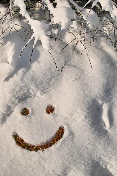 Corporate Flower Smile in Wir wünschen ...